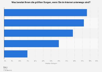 Umfrage zu Sorgen bei der Internetnutzung in Deutschland 2019