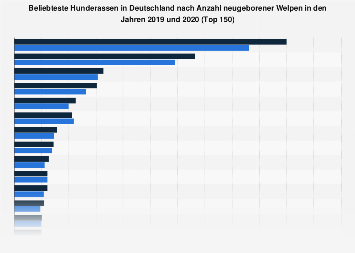 Beliebteste Hunderassen in Deutschland nach neugeborenen Welpen 2017