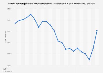 Hundewelpen in Deutschland bis 2017