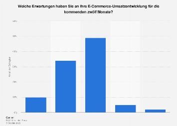 Erwartung von B2B-Händlern an den E-Commerce-Umsatz in Deutschland 2019