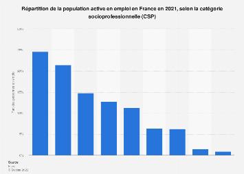 Population active en emploi par groupe socioprofessionnel en France 2017