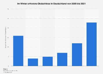 anzahl der wohnungslosen in deutschland bis 2016 und. Black Bedroom Furniture Sets. Home Design Ideas