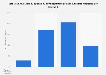 Opinion sur la possibilité de consulter par Internet en France 2017