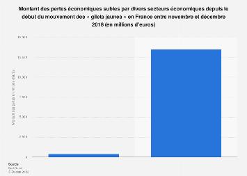 Montant de la baisse de revenus induite par les gilets jaunes par secteur France 2018