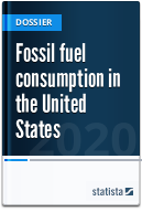 Fossil fuel consumption in the United States