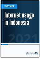 Internet usage in Indonesia