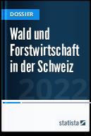 Wald und Forstwirtschaft in der Schweiz