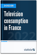 Television consumption in France