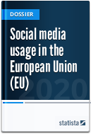 Social media usage in the European Union (EU)