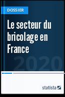 Le secteur du bricolage en France