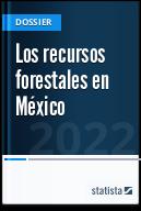 Los recursos forestales en México