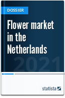 Flower market in the Netherlands