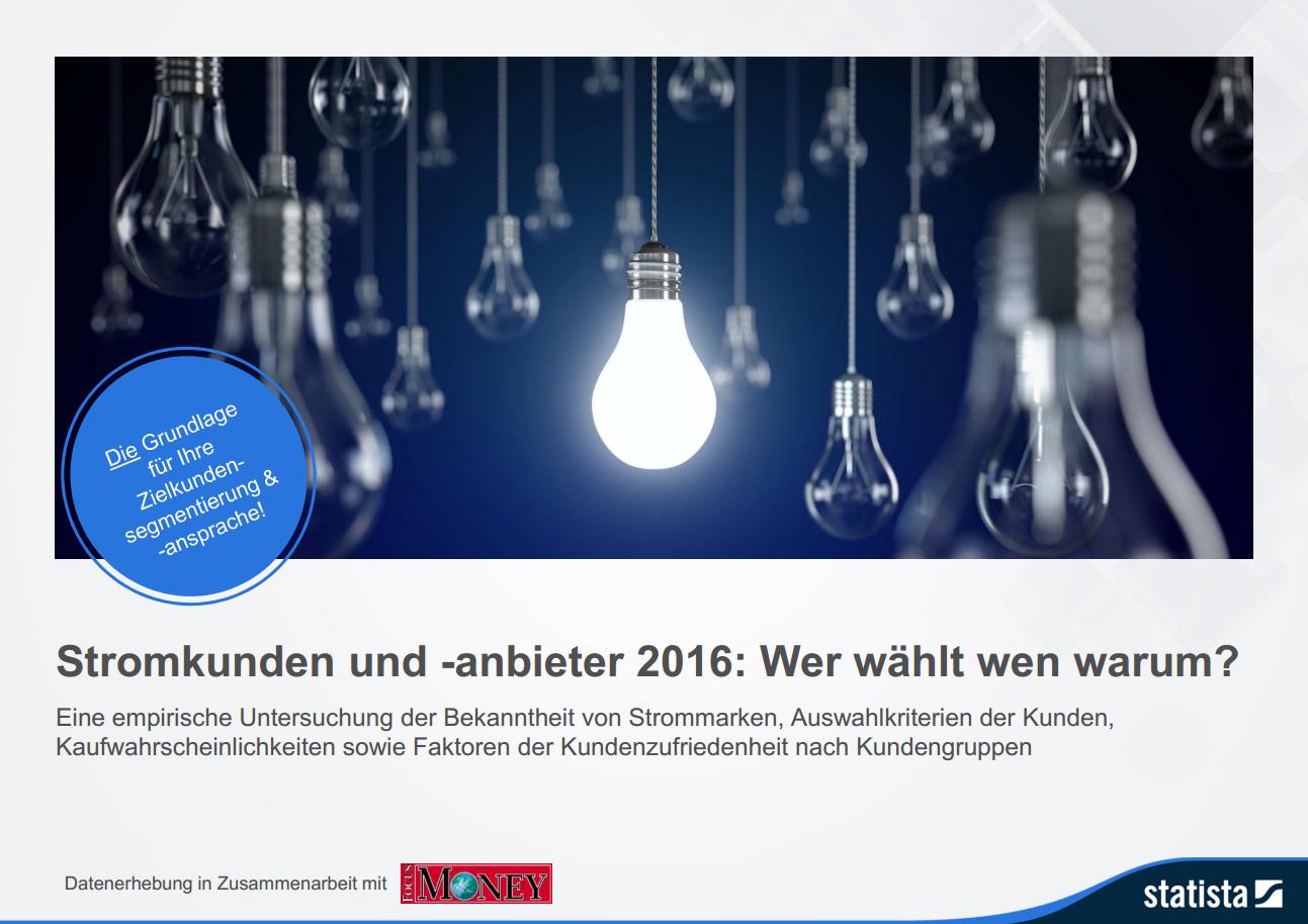 Stromkunden und –anbieter 2016: Wer wählt wen warum?