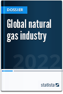 Global natural gas industry