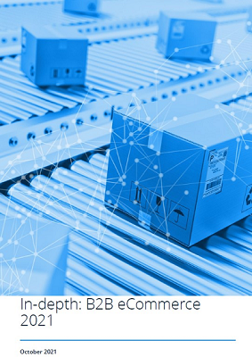 In-depth: B2B e-Commerce 2019