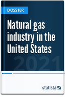 Natural gas industry in the U.S.