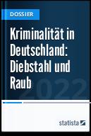 Kriminalität in Deutschland: Diebstahl und Raub