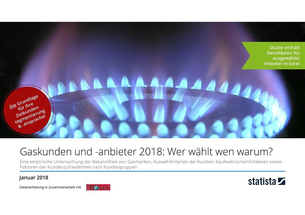 Gaskunden und -anbieter 2018: Wer wählt wen warum?