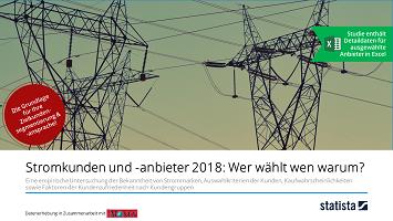 Stromkunden und -anbieter 2018: Wer wählt wen warum?