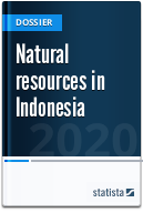 Natural Resources in Indonesia