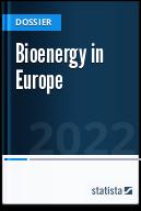 Bioenergy industry in Europe