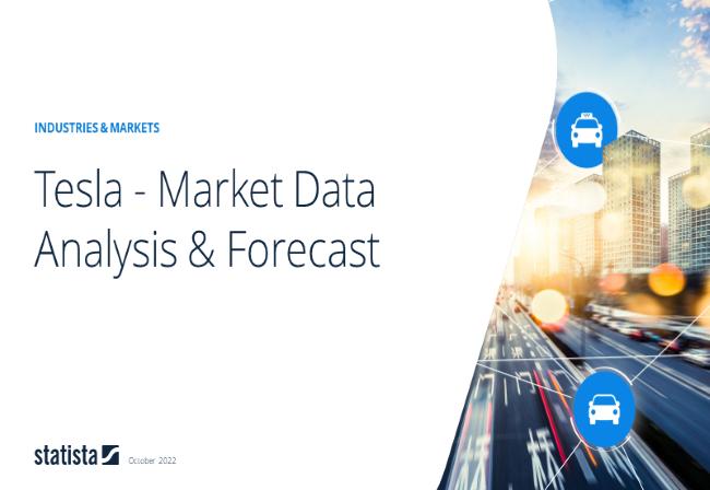 Tesla Report 2020