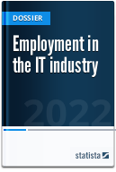 Employment in the IT industry