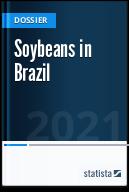 Soybean in Brazil