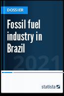 Fuel industry in Brazil