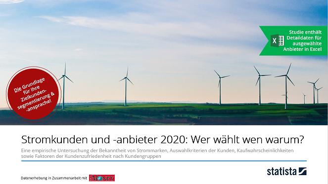 Stromkunden und -anbieter 2020: Wer wählt wen warum?