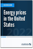 Energy prices in the United States