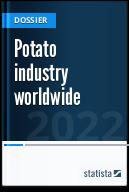 Potato industry worldwide