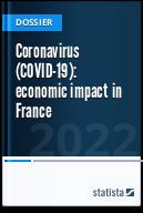 Coronavirus (COVID-19): economic impact in France