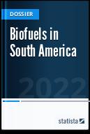 Biofuels in South America