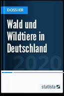Wald und Wildtiere in Deutschland