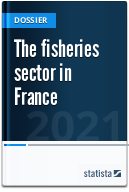 The fisheries sector in France