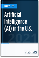 Artificial Intelligence (AI) in the U.S.