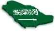 Saudi Arabia statistics