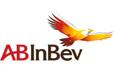 Anheuser-Busch InBev (AB InBev) statistics