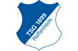 TSG 1899 Hoffenheim Statistiken