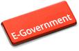 E-government statistics