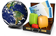 Global Business Travel Industry - Statistics & Facts