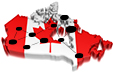 Social networking in Canada statistics