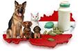 Animal Health und Veterinärmedizin in Österreich statistics