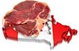 Beef Market in Canada statistics