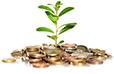 Le crowdfunding en France  statistiques