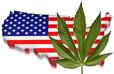 Drug use in the U.S. statistics