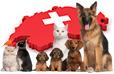 Haustiere in der Schweiz statistics