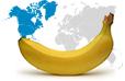 Bananas in North America statistics