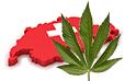 Illegale Drogen in der Schweiz Statistiken